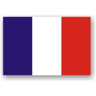 bandiera francese adesiva-600x600