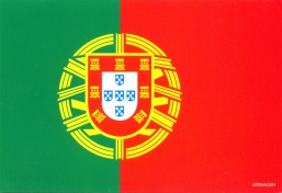 Copy of PORTUGAL - flag